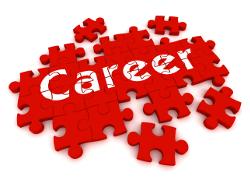 career_jigsaw250