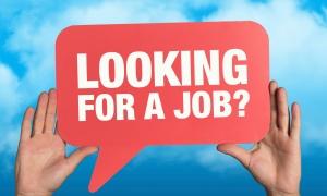 need_a_job250