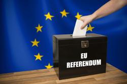 eu_referendum250