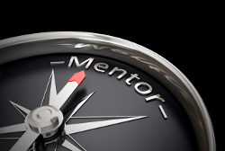 mentor250
