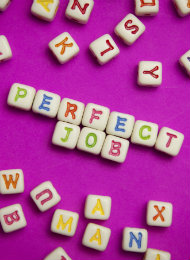 Should you wait for the perfect job?