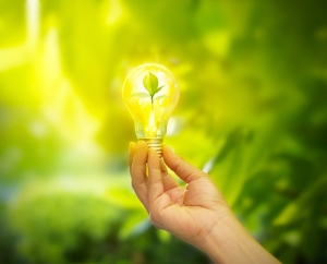 hand holding light bulb with energy, fresh green leaves inside