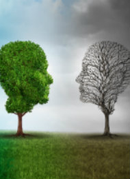 How to take care of your mental health and well-being atuniversity